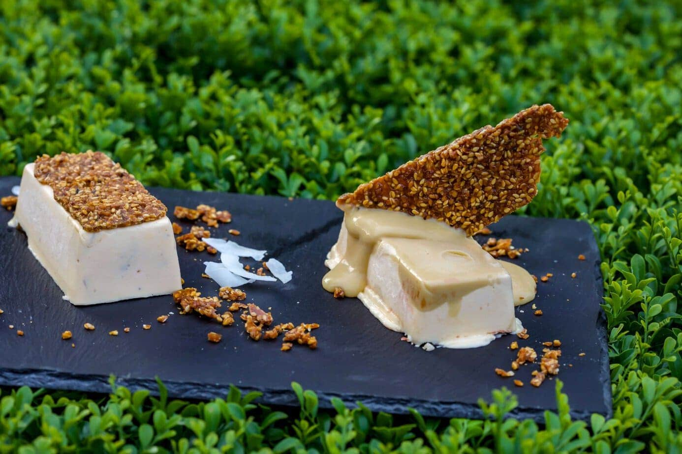 Ice cream Bars with coconut and sesame snap