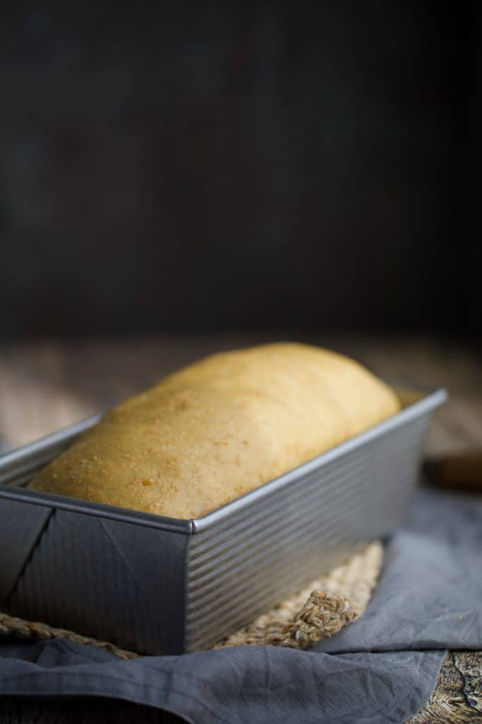 loaf of bread in a loaf pan