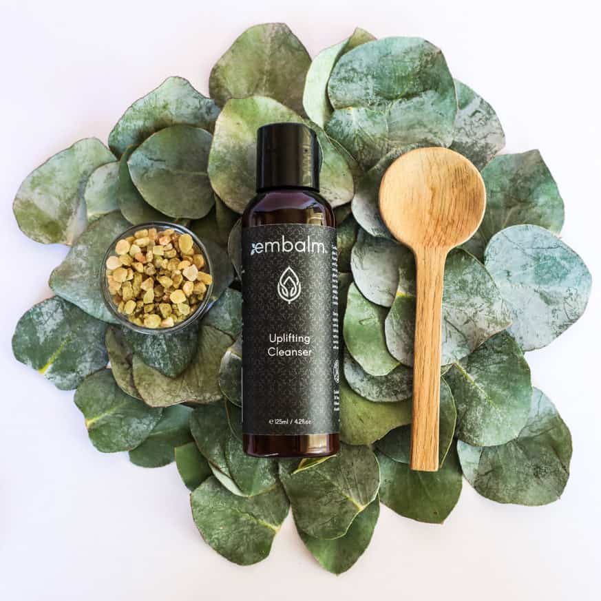 all natiral skin care cleanser on top of a bundle of leaves