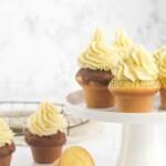 Keto cakes on a white backdrop.